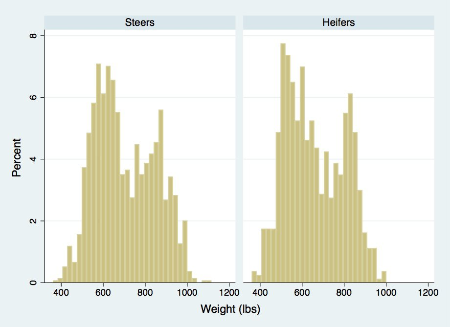 WeightS&H.jpg